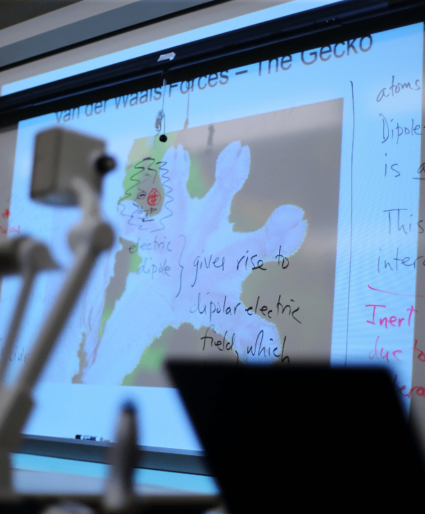 an image of a gecko's leg projected onto a whiteboard